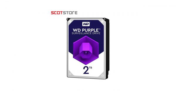 هارد western 2t purple
